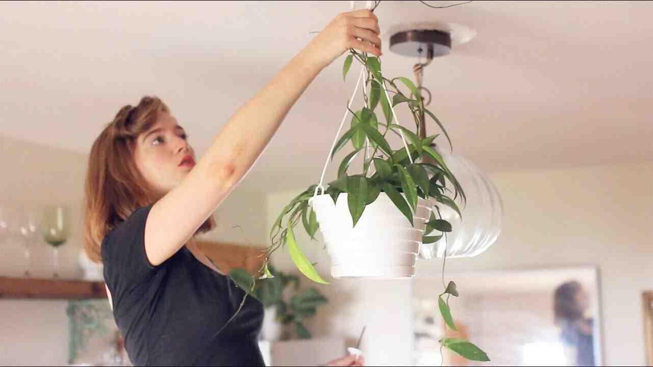 Where do you hang a swag lamp?